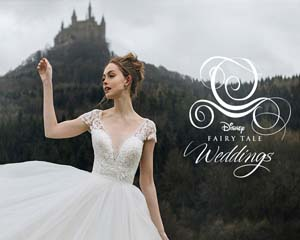 Image of the Cinderella dress with a real castle in the background